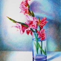 pink-gladiolus-sm_v_winters-2010